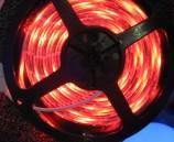 STRIP LED LIGHTS (1)